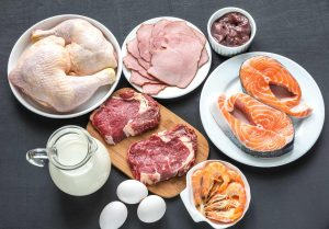 what to eat on a protein sparing modified fast diet