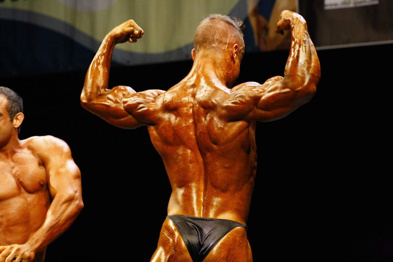 anabolicki steroidi pdf