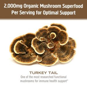 Om turkey tail mushroom